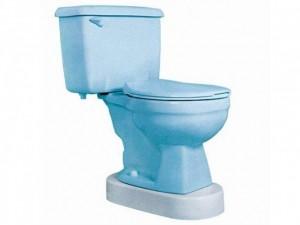 Toilevator Grande Parsons Adl